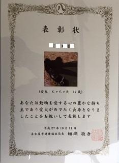 ちゃちゃ丸10.jpg