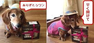 ラフ&宮川3.jpg